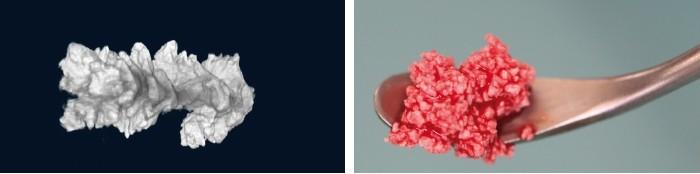 nanobone granulado 2