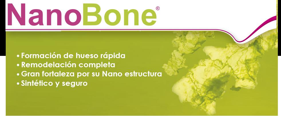 nanobone-II